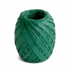 Cambridge Imprint Paper Ribbon Forest Green
