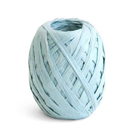 Cambridge Imprint Paper Ribbon Pale Turquoise