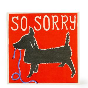 Cambridge Imprint Large Square Card So Sorry Dog