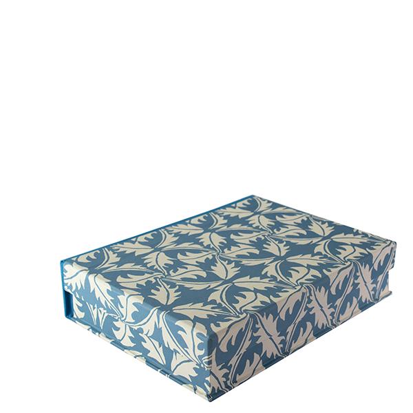 A5 Box File Dandelion Blue by Cambridge Imprint
