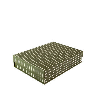 A5 Box File Seed Olive by Cambridge Imprint
